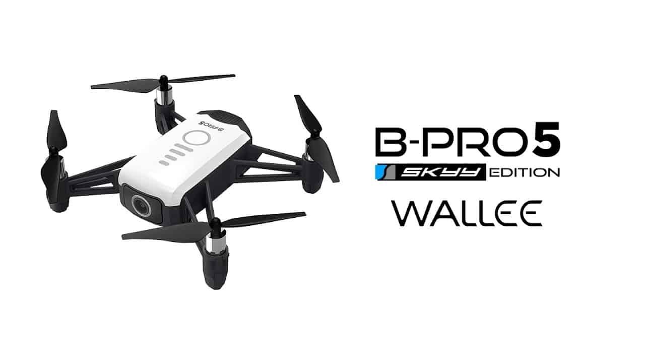 Brica-B-PRO5-SE-Wallee