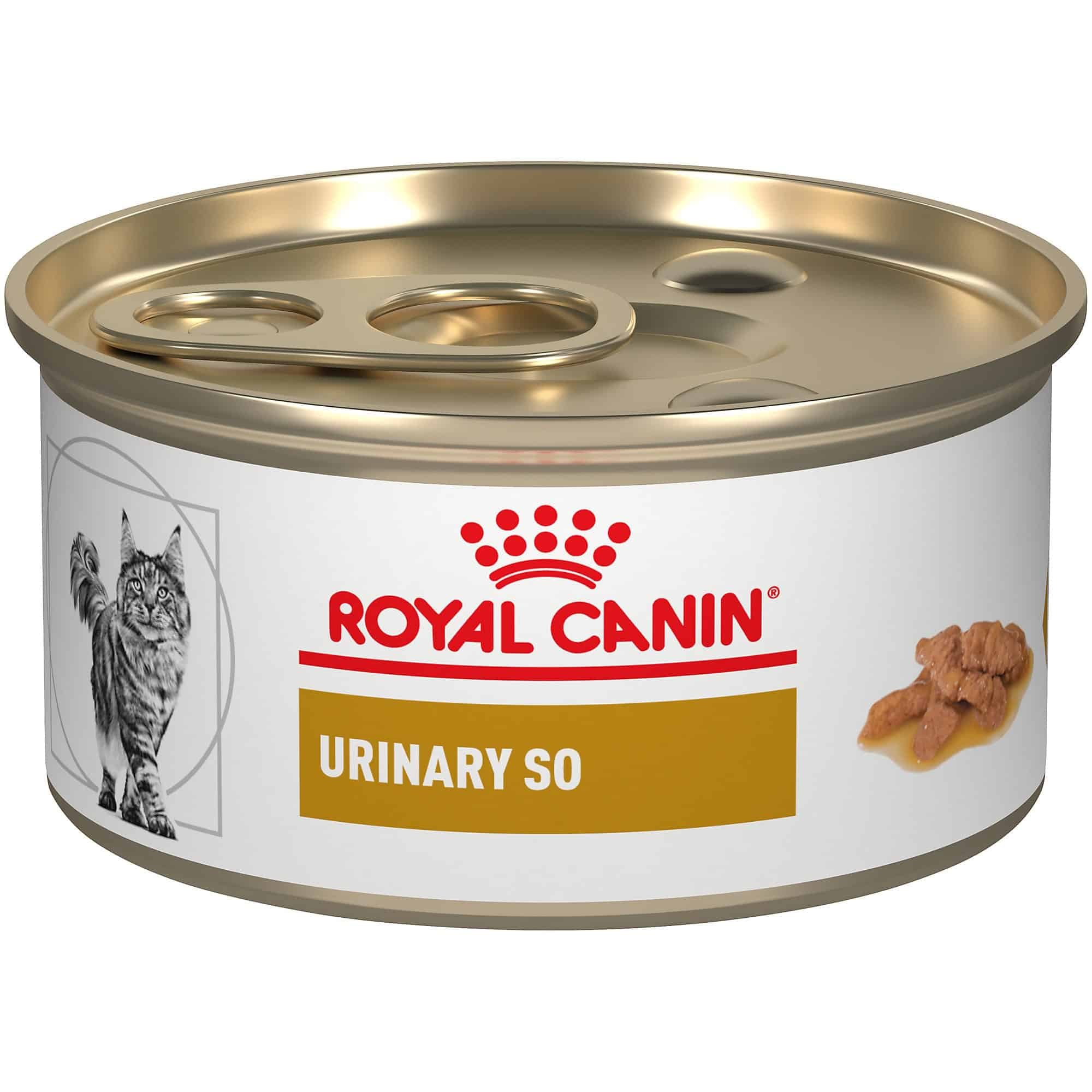 ROYAL-CANIN-Recovery-Can
